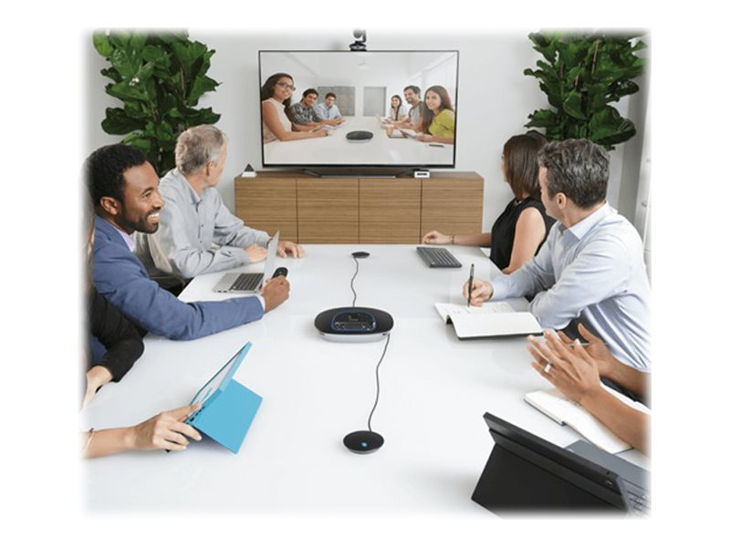 Logitech Group ConferenceCam microphones